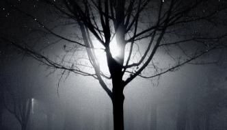 Een licht in donkere dagen